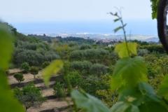 Vista mare/Sea view